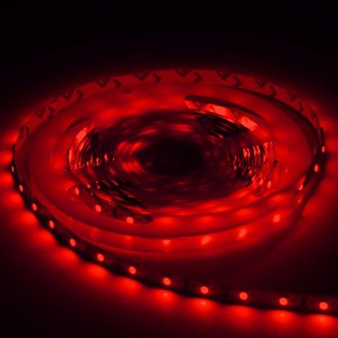 Світлодіодна стрічка SMD3528 (червона, 300 світлодіодів, 12 В DC, 5 м, IP65) Прев'ю 2